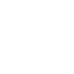 icon flower white