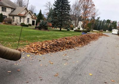 spring fall cleanup 2