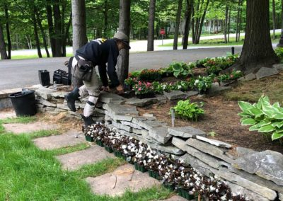 Garden Planting 02