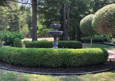 Garden Trimming 01