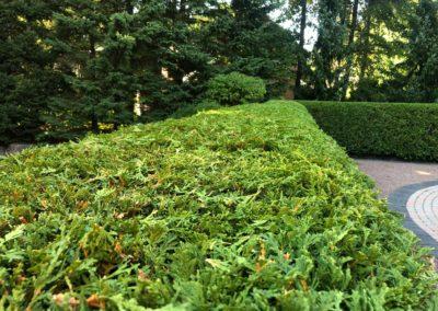 Garden Trimming 02