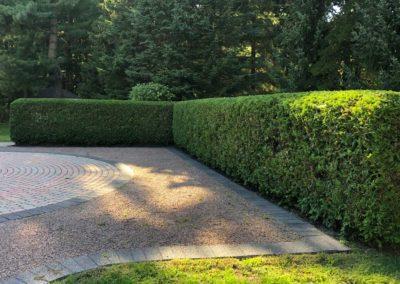 Garden Trimming 06
