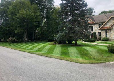 striped lawn 2