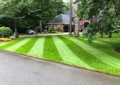 striped lawn 3